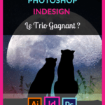Avis-illustrator-photoshop-indesign